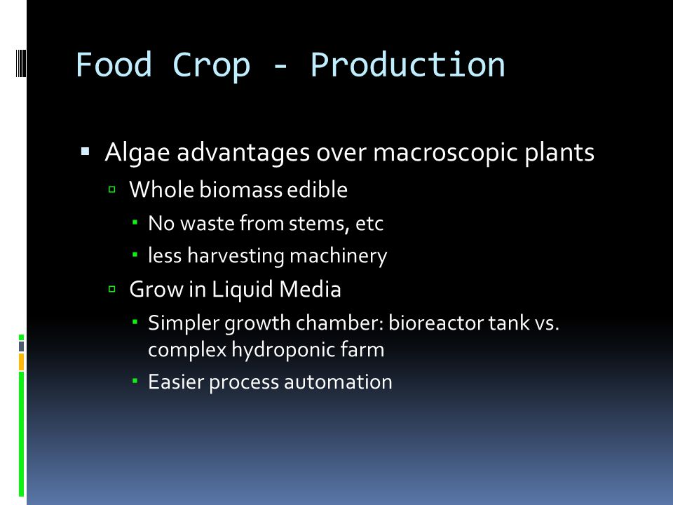 Food Crop - Production Algae advantages over macroscopic plants