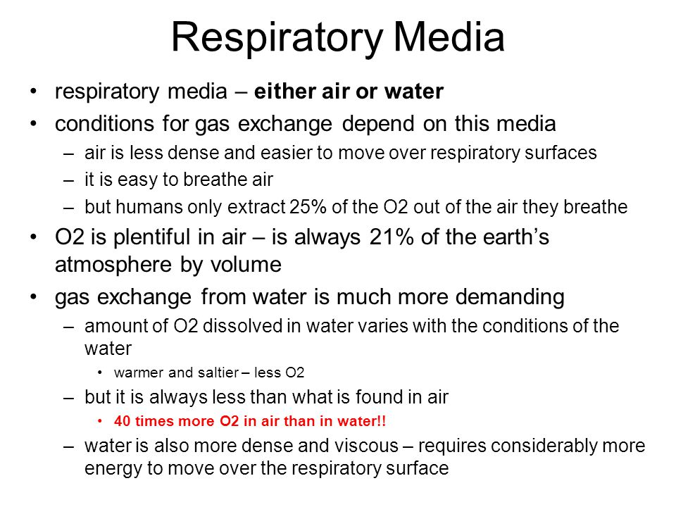 Respiratory Media respiratory media – either air or water