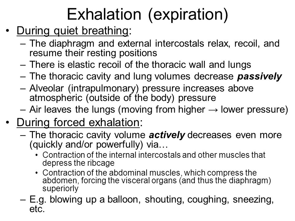 Exhalation (expiration)
