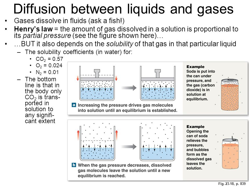 Diffusion between liquids and gases
