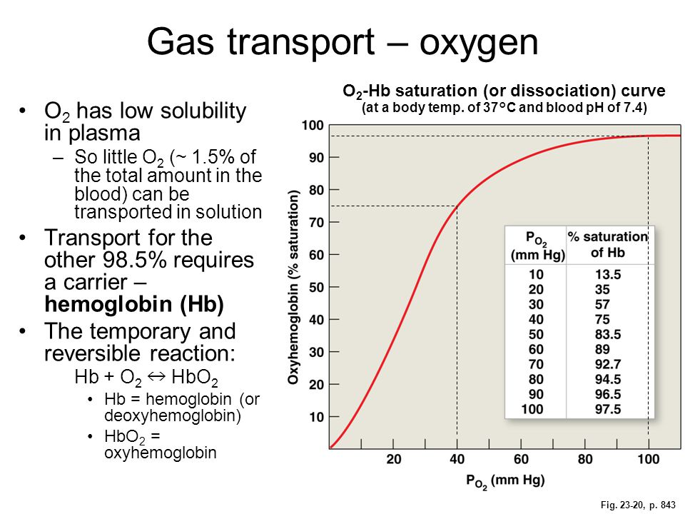 Gas transport – oxygen O2 has low solubility in plasma
