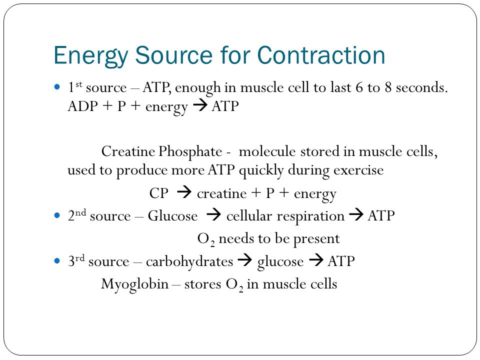 Energy Source for Contraction