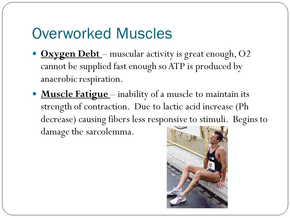 Overworked Muscles Oxygen Debt – muscular activity is great enough, O2 cannot be supplied fast enough so ATP is produced by anaerobic respiration.