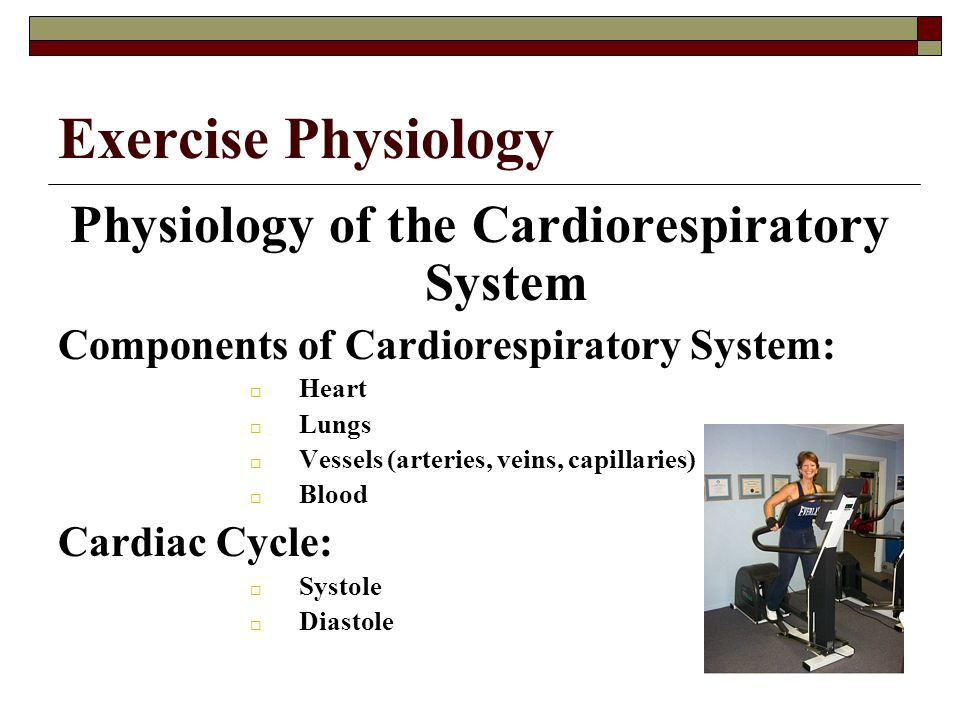 Physiology of the Cardiorespiratory System