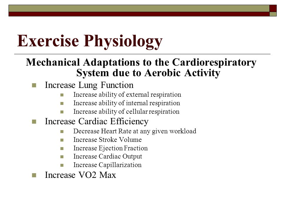 Exercise Physiology Mechanical Adaptations to the Cardiorespiratory System due to Aerobic Activity.