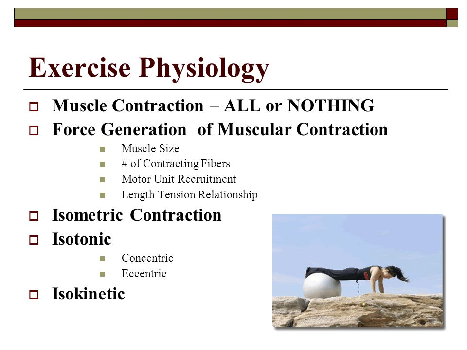 Exercise Physiology Muscle Contraction – ALL or NOTHING