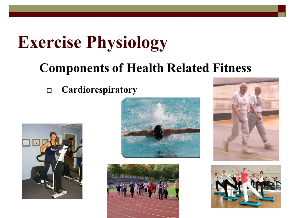 Components of Health Related Fitness