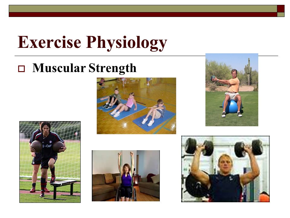Exercise Physiology Muscular Strength