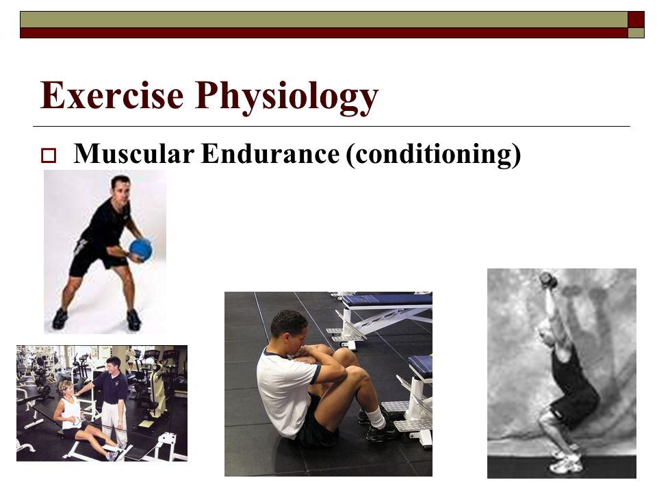 Exercise Physiology Muscular Endurance (conditioning)