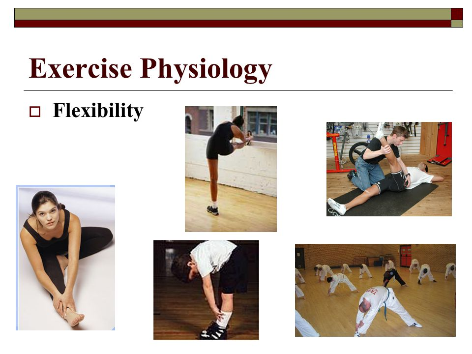 Exercise Physiology Flexibility