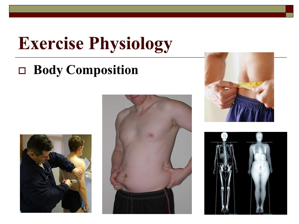 Exercise Physiology Body Composition