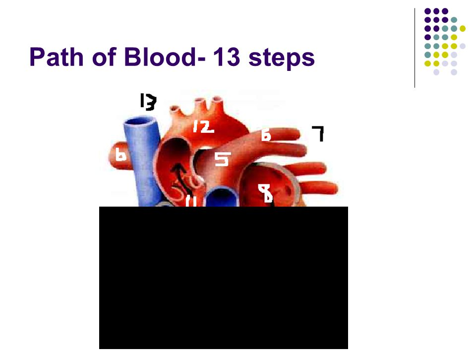 Path of Blood- 13 steps