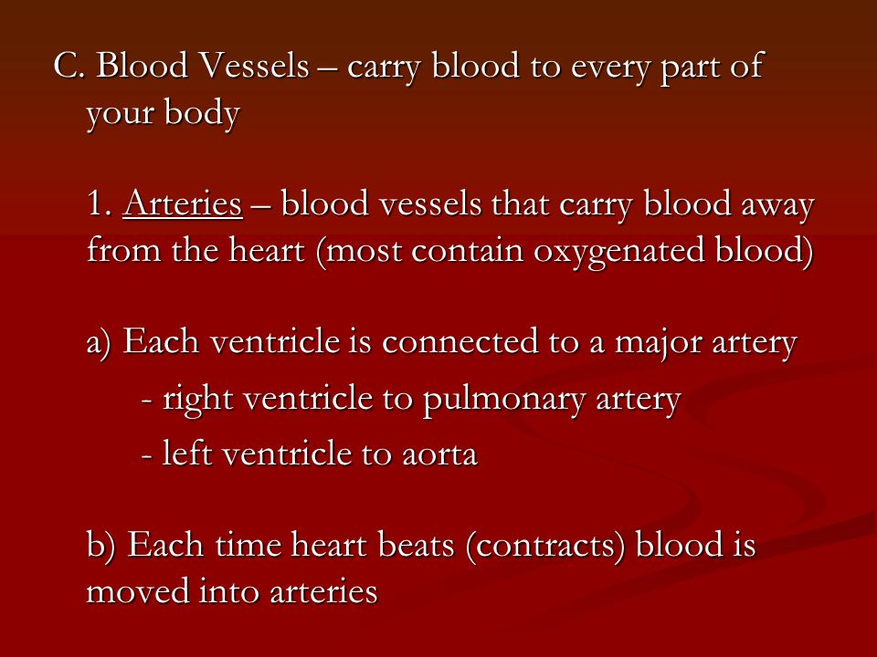 C. Blood Vessels – carry blood to every part of your body 1