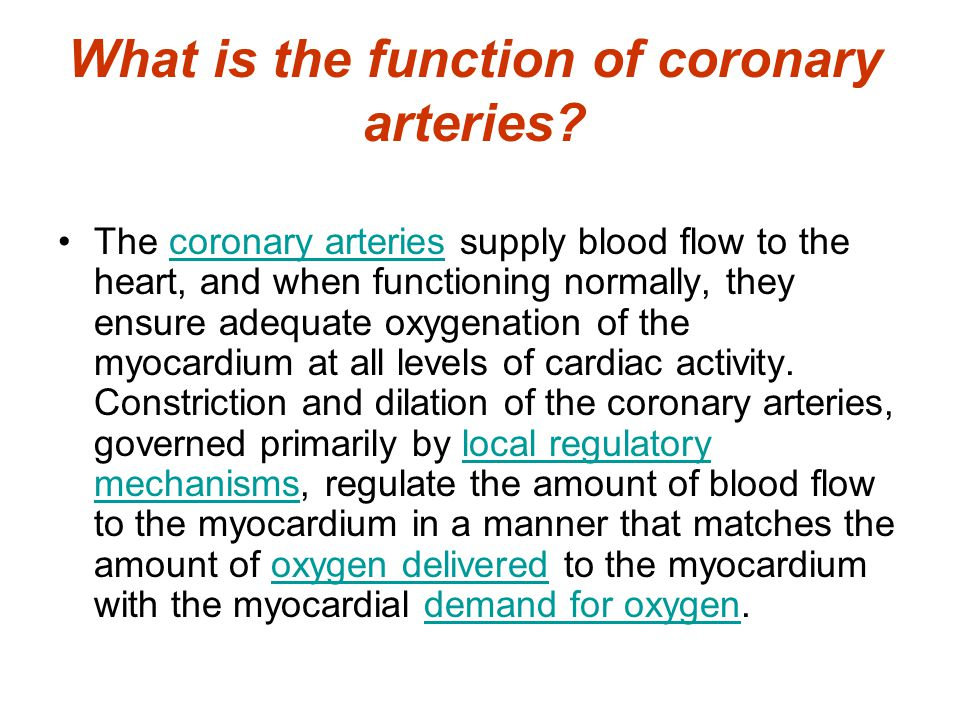 What is the function of coronary arteries