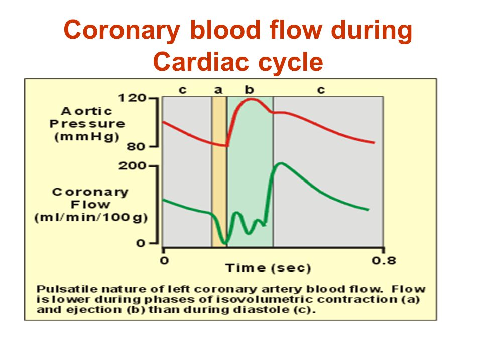 Coronary blood flow during Cardiac cycle