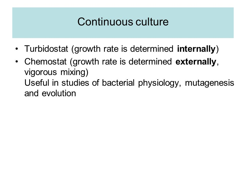 Continuous culture Turbidostat (growth rate is determined internally)