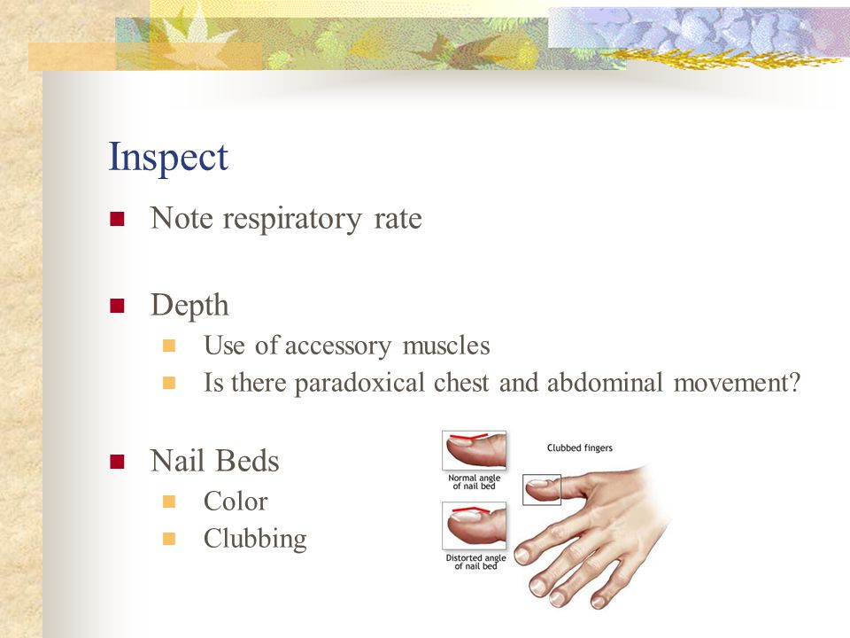 Inspect Note respiratory rate Depth Nail Beds Use of accessory muscles