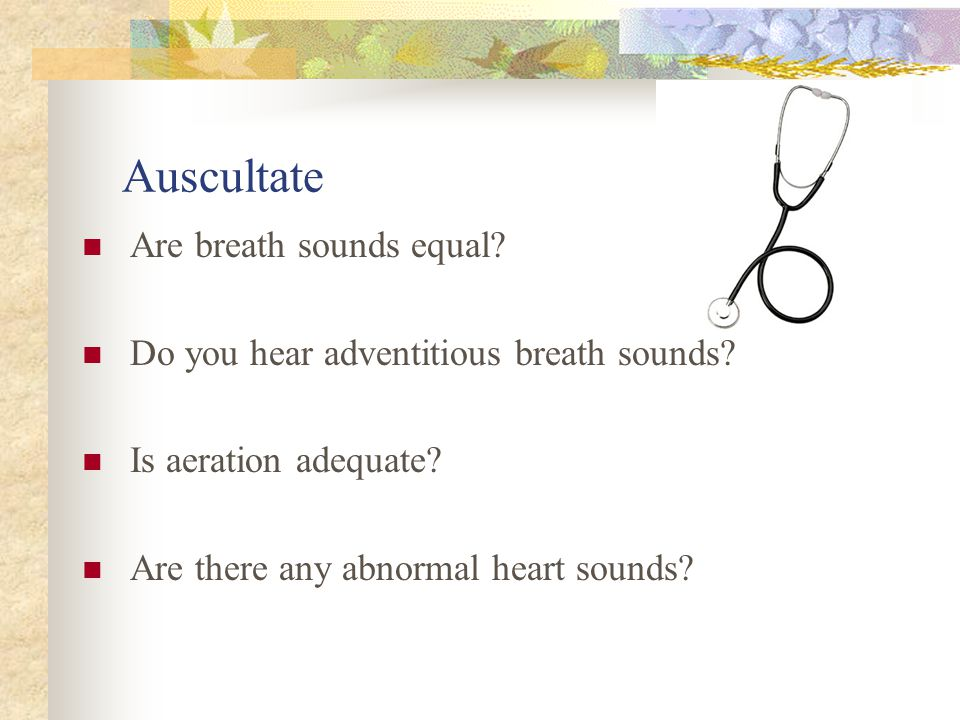 Auscultate Are breath sounds equal