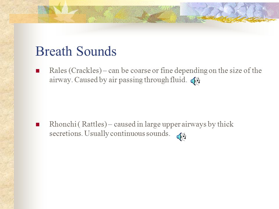 Breath Sounds Rales (Crackles) – can be coarse or fine depending on the size of the airway. Caused by air passing through fluid.