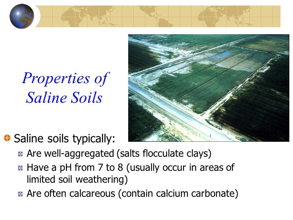 Properties of Saline Soils