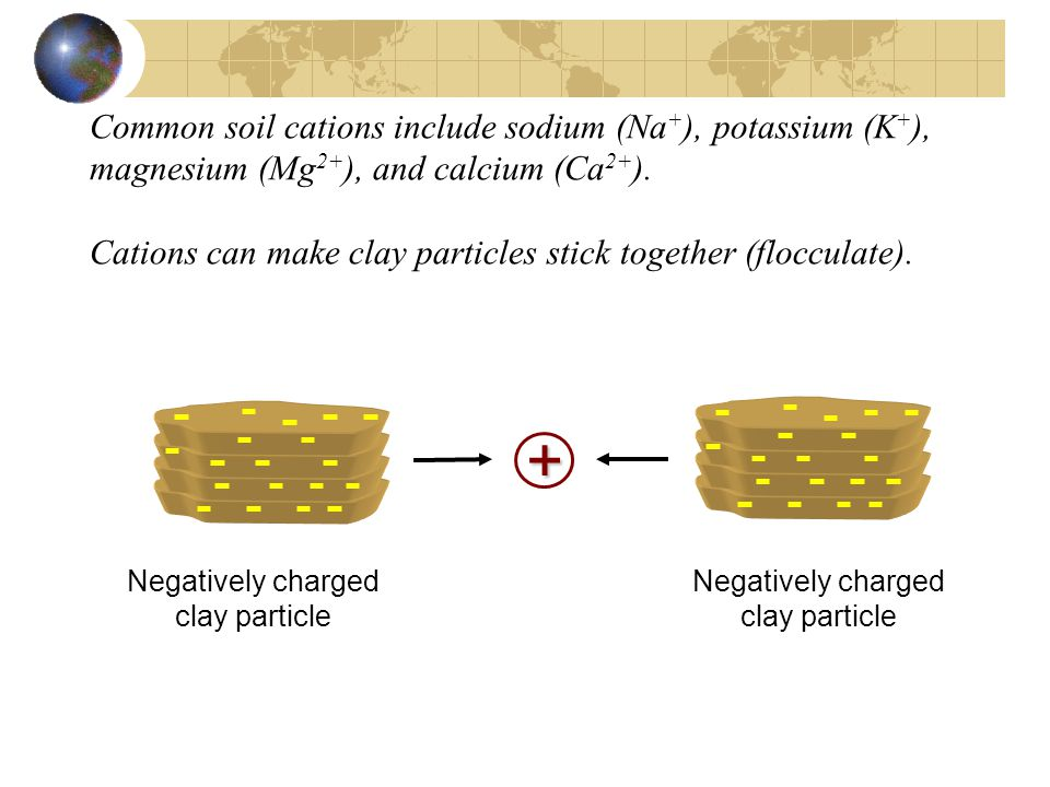 Common soil cations include sodium (Na+), potassium (K+), magnesium (Mg2+), and calcium (Ca2+). Cations can make clay particles stick together (flocculate).
