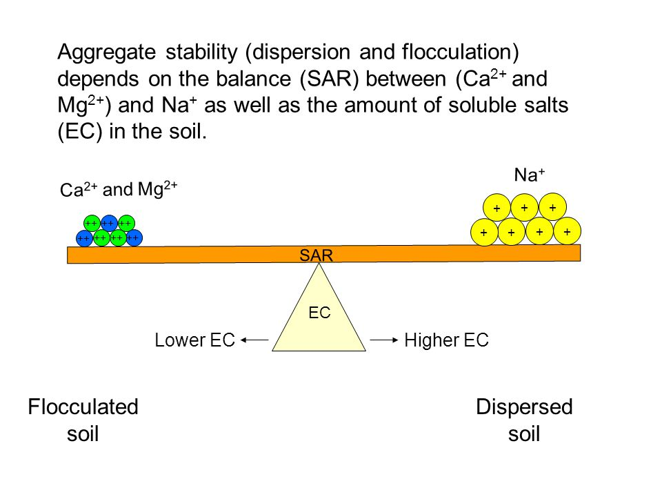 Aggregate stability (dispersion and flocculation) depends on the balance (SAR) between (Ca2+ and Mg2+) and Na+ as well as the amount of soluble salts (EC) in the soil.