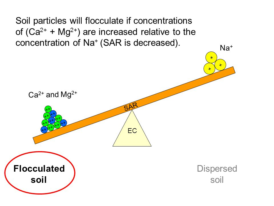 Soil particles will flocculate if concentrations of (Ca2+ + Mg2+) are increased relative to the concentration of Na+ (SAR is decreased).