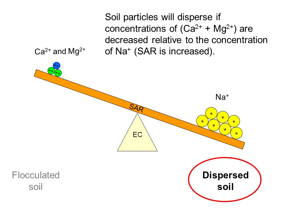 Soil particles will disperse if concentrations of (Ca2+ + Mg2+) are decreased relative to the concentration of Na+ (SAR is increased).