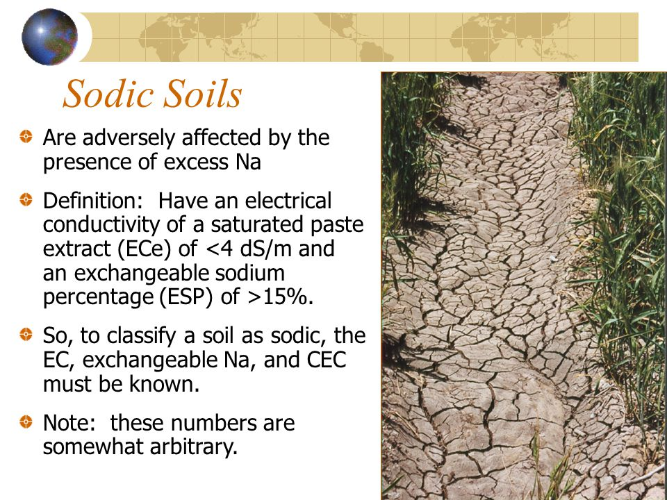 Sodic Soils Are adversely affected by the presence of excess Na