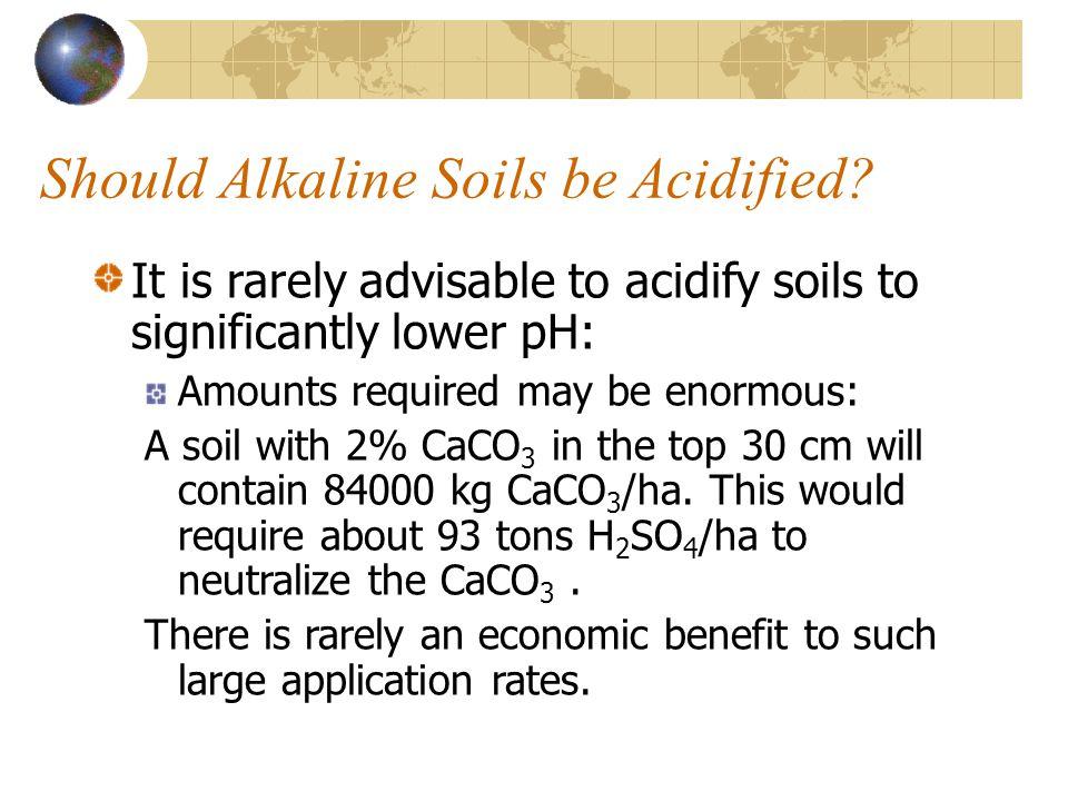 Should Alkaline Soils be Acidified
