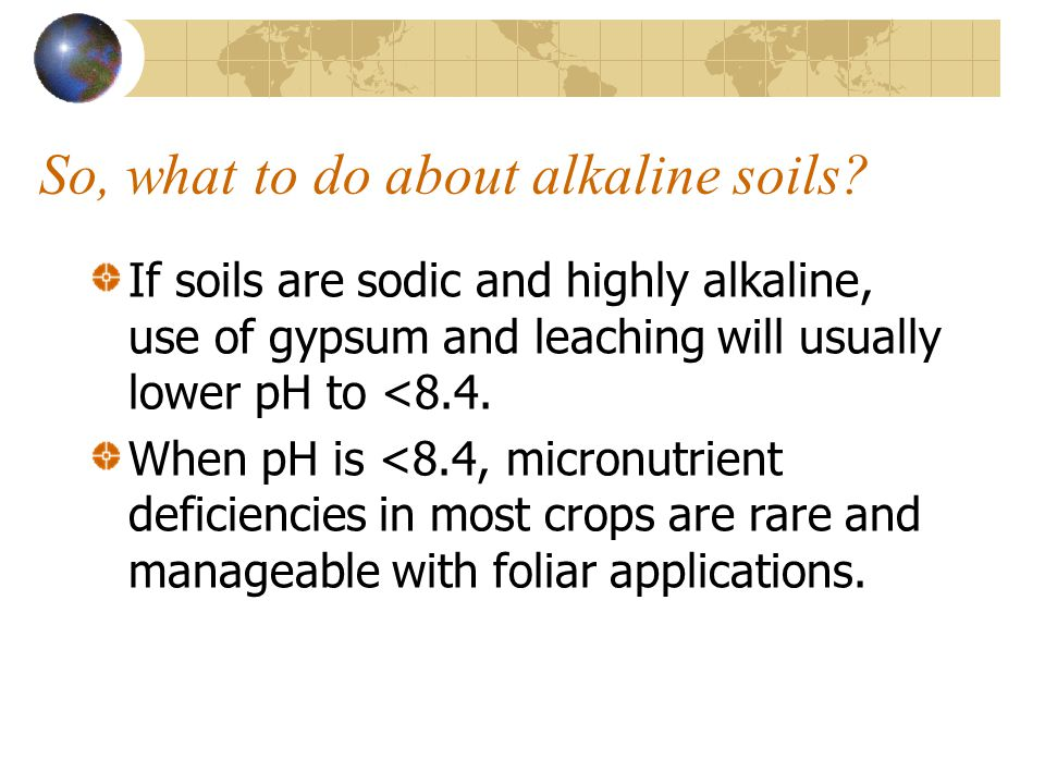So, what to do about alkaline soils