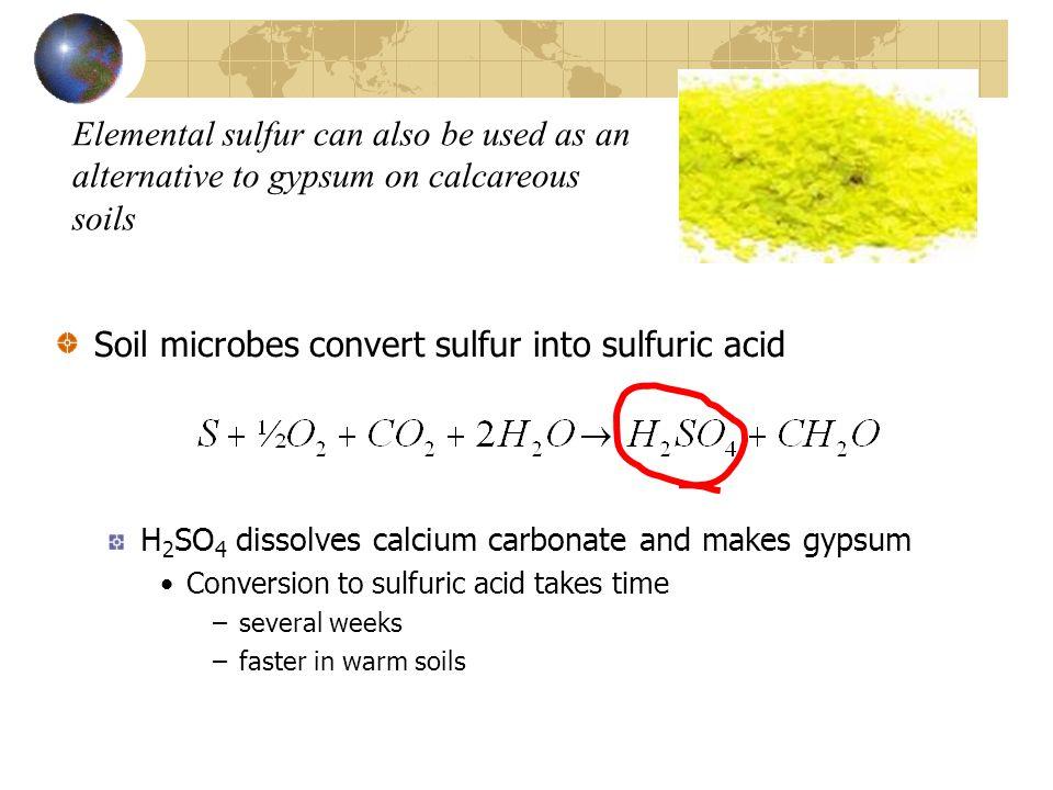 Soil microbes convert sulfur into sulfuric acid