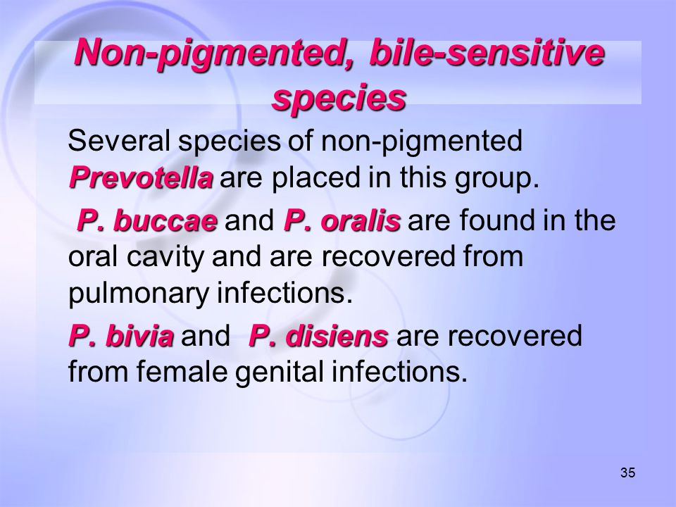 Non‑pigmented, bile‑sensitive species