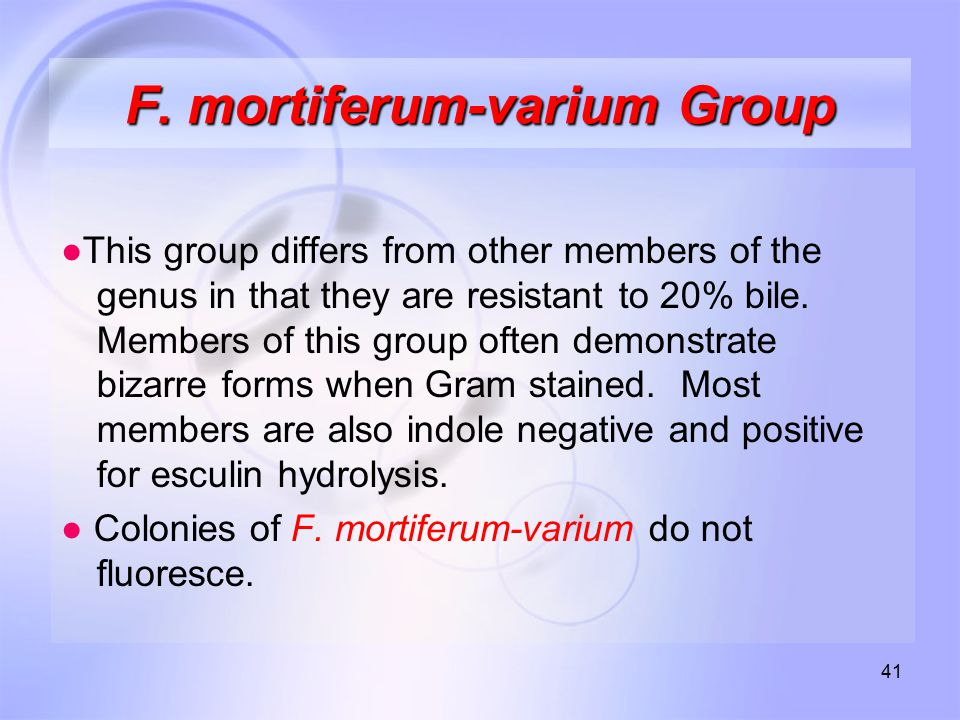 F. mortiferum-varium Group