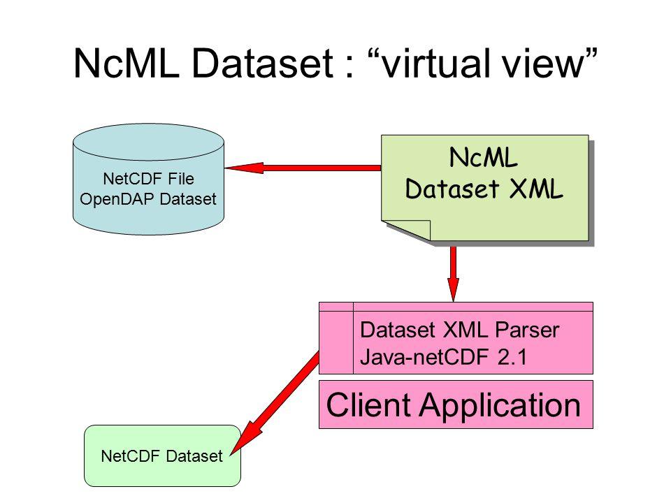 NcML Dataset : virtual view
