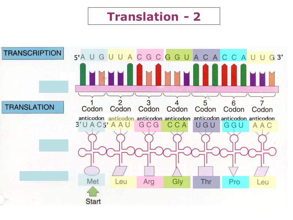 Translation - 2 14