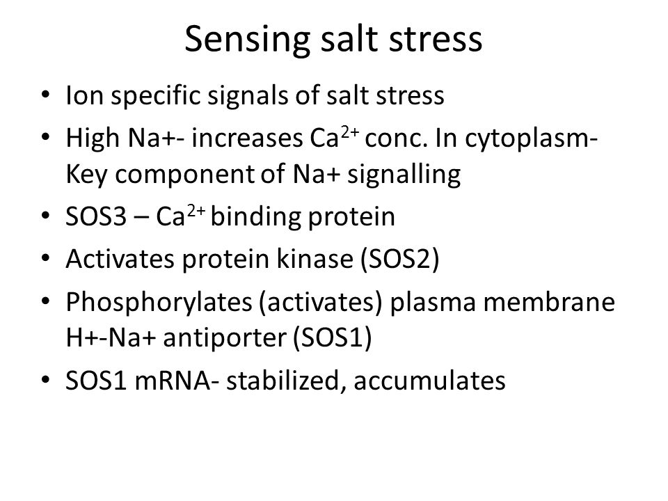 Sensing salt stress Ion specific signals of salt stress