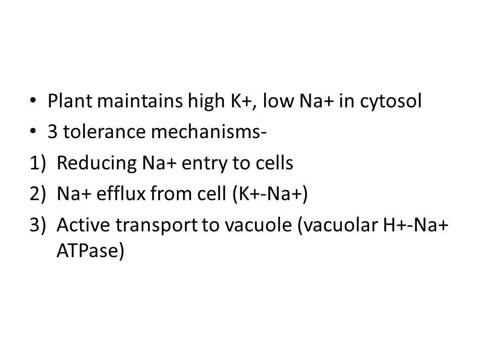 Plant maintains high K+, low Na+ in cytosol