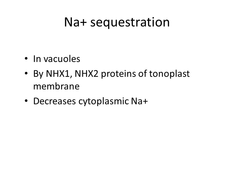 Na+ sequestration In vacuoles