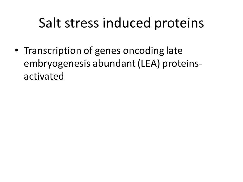 Salt stress induced proteins