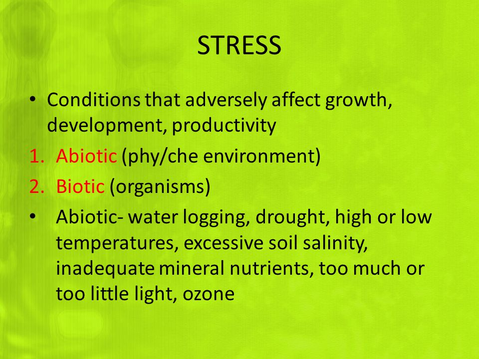 STRESS Conditions that adversely affect growth, development, productivity. Abiotic (phy/che environment)
