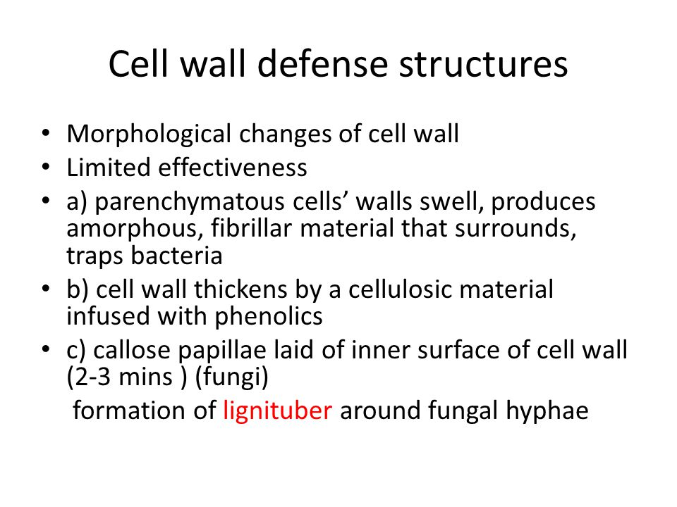 Cell wall defense structures
