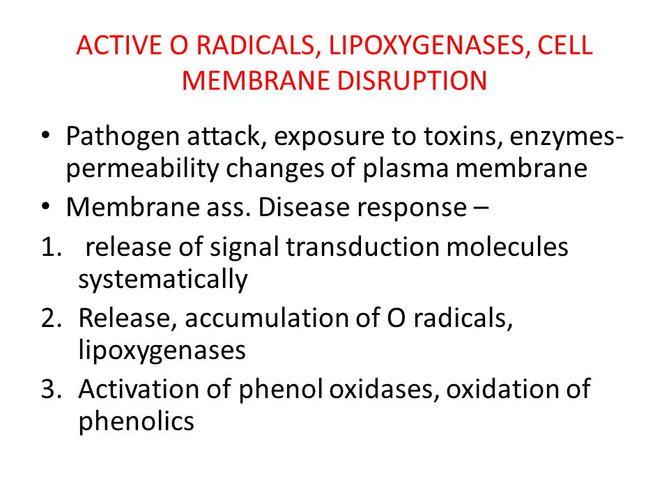 ACTIVE O RADICALS, LIPOXYGENASES, CELL MEMBRANE DISRUPTION