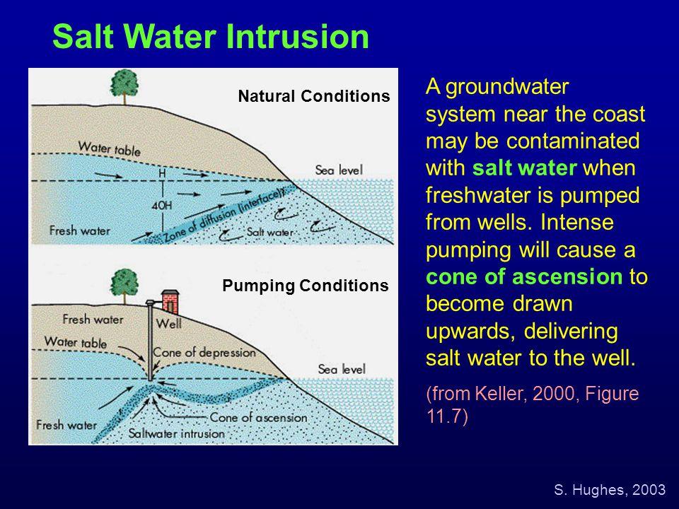 Salt Water Intrusion