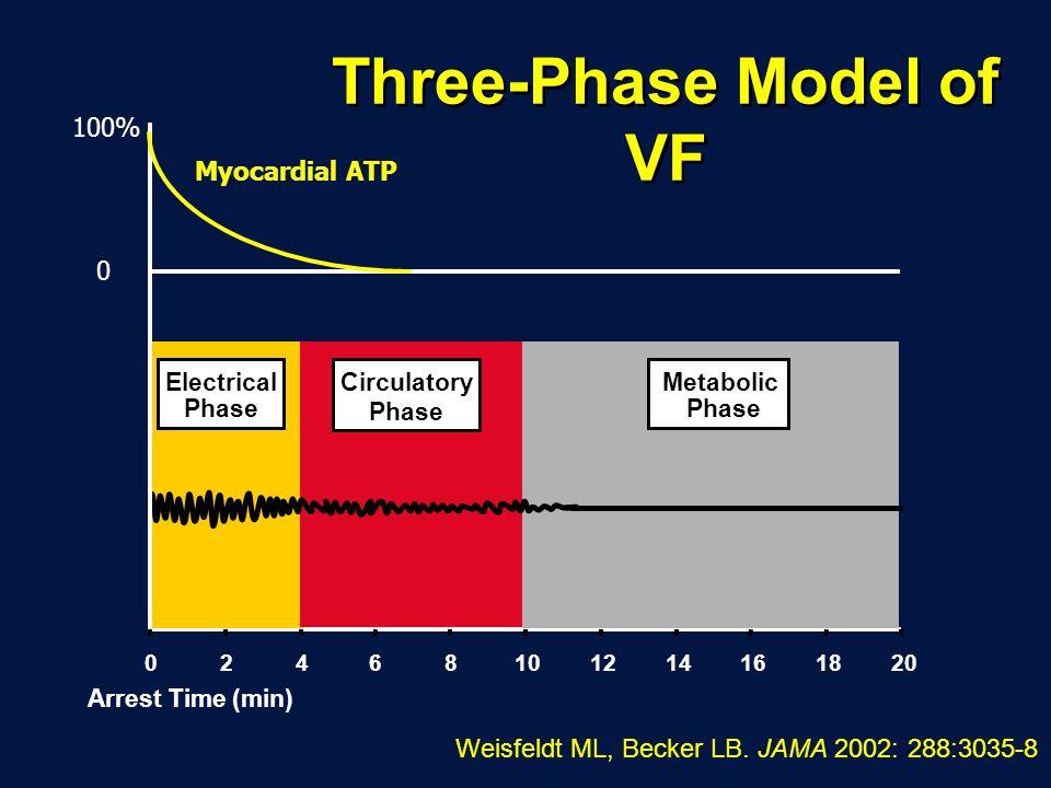 Three-Phase Model of VF