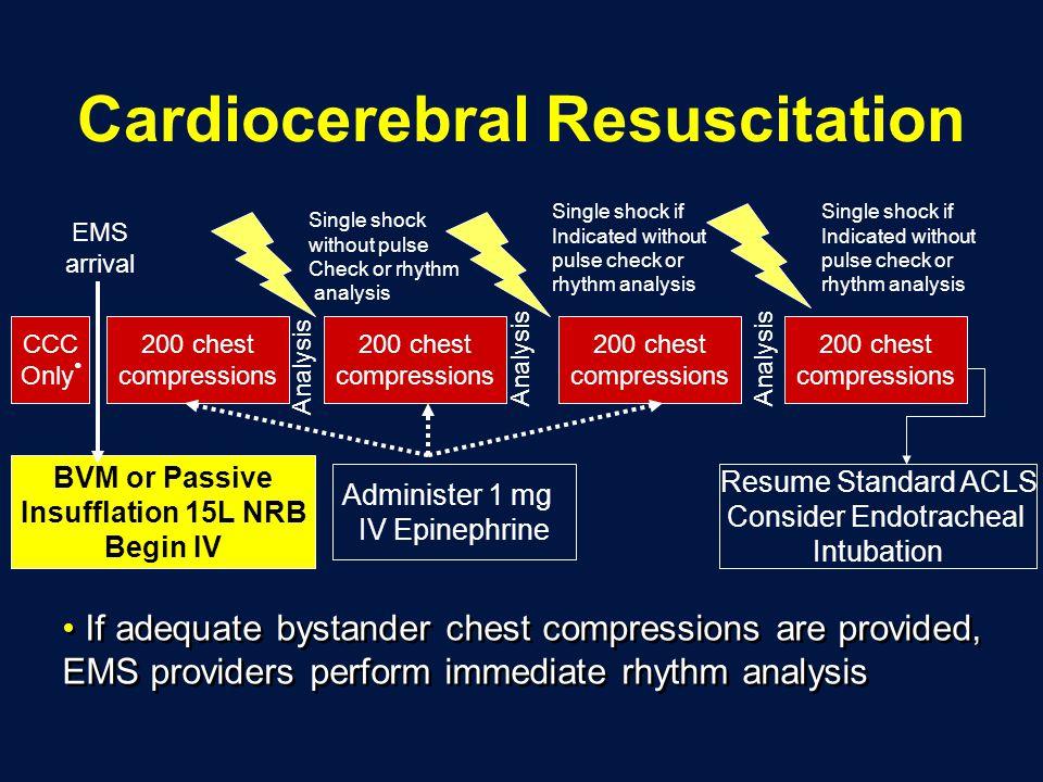 Cardiocerebral Resuscitation