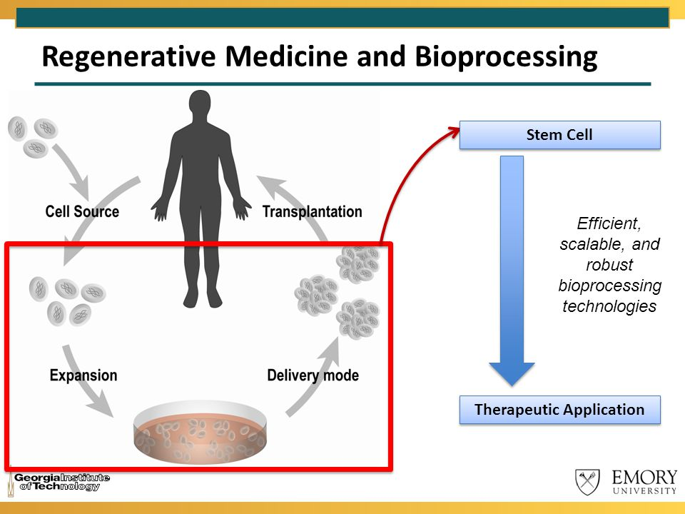 Regenerative Medicine and Bioprocessing