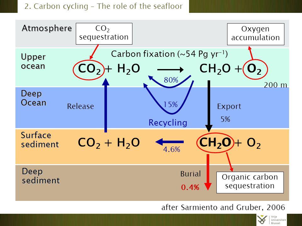 CO2 + H2O CH2O + O2 O2 CH2O Atmosphere Carbon fixation (~54 Pg yr-1)