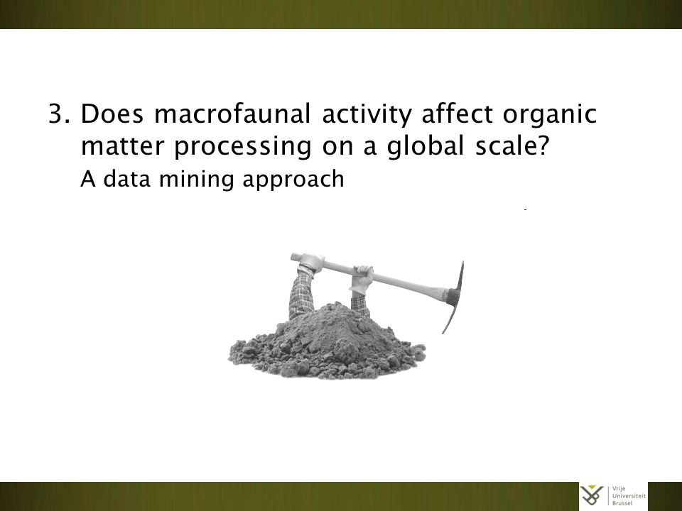 3. Does macrofaunal activity affect organic matter processing on a global scale