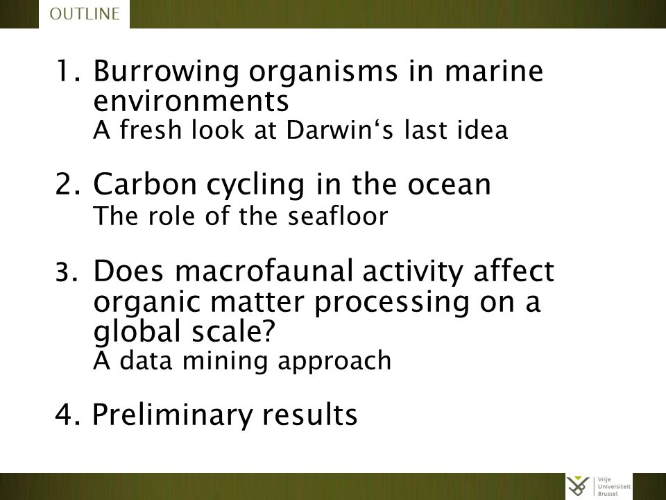 1. Burrowing organisms in marine environments
